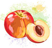 Peach and slice  on spots of paint — Stock Vector