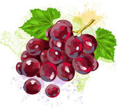 Red Grapes on background of grunge spots — Stock Vector