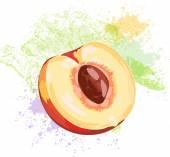 Peach slice  on spots of paint — Stock Vector