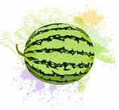 Watermelon on spots of paint — Stock Vector