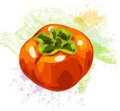 Persimmon on spots of paint — Stock Vector