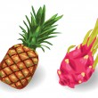 Pineapple and Dragon fruit set — Stock Vector #65803283