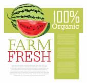 Menu design with Watermelon — Stock Vector