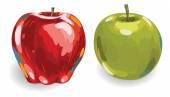 Hand drawn Fruits set — Stock Vector