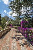 Public gardens in Taormina, Sicily — Stock Photo