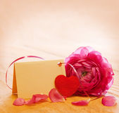 Pink rose and Mother day card. — Stock Photo