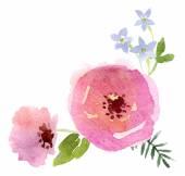 Watercolor flowers design — Stock Vector