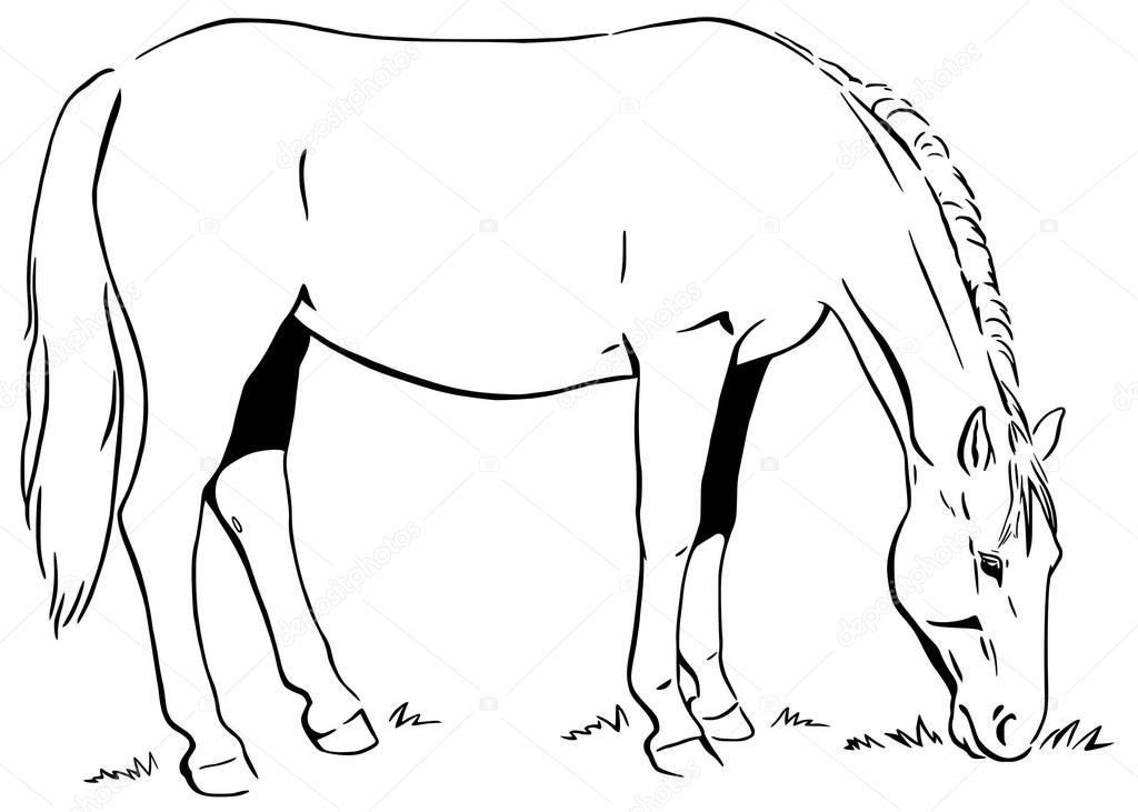 Kleurplaten Volwassenen Dolfijnen in addition Nova The Miniature Horse likewise Carousel Horsey 1 174530921 furthermore Christmas Coloring 2 as well Spirit Riding Free Coloring Pages 1015. on coloring pages for adults horses