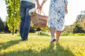 Young cheerful lovers are going to a picnic — Stock Photo