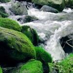 Mountain stream — Stock Photo #68140243