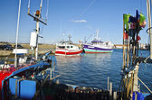 Fisher boats in Joinville port in Yeu Island — Stock Photo