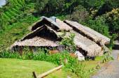 Bamboo hut in hill tribe village — Stock Photo