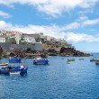 Fishing boats in the Bay of Camara de Lobos. — Stockfoto #71539927