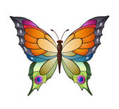 Decoration Bright butterfly — Stock Vector