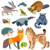 Karikatür orman hayvanları seti — Stok Vektör