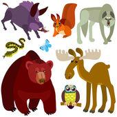Cartoon forest animals set — Stock Vector