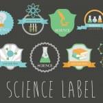 Постер, плакат: Science infographic set