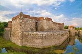 Baba Vida Fortress — Stock Photo