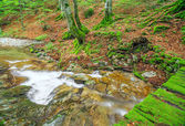 Small river in the mountain — Stock Photo