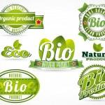 Eco bio logos — Vector de stock  #61864929