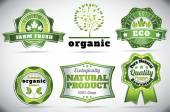 Eco bio logos — Vettoriale Stock