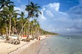 Caribbean Beach — Stock Photo