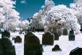 Infrared cemetery — Stock Photo