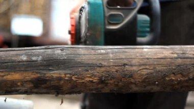 Cutting a log — Stock Video