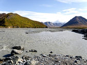 Denali Alaska — 图库照片
