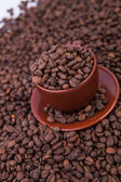 Coffee Cup with saucer full of Roasted Coffee Beans — Stock Photo