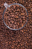 Transparent Coffee Cup full of Roasted Coffee Beans — Stock Photo