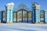 Gate of the Catherine Palace — Stock Photo