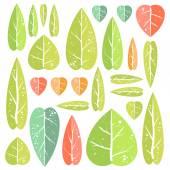 Ensemble de feuilles — Vecteur