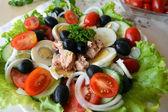 Blandade grönsakssallad med tonfisk och olivolja — Stockfoto