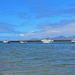Landscape Majanicho beach in Fuerteventura Canary islands Spain — Stock Photo #63404659