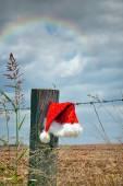 Aussie Christmas — Stock Photo
