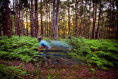 Mountain bike riding — Stock Photo
