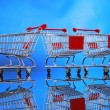 Little shopping carts — Stock Photo #62808075