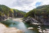 La rivière — Photo