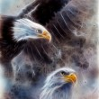 Beautiful painting of two eagles on an abstract background fract — Stock Photo #65309095