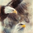 Beautiful painting of two eagles on an abstract background Symbol USA — Stock Photo #65309099