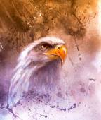 Symbol of American Freedom, wild bald eagle , one stretching his black wings to fly, on abstract background — ストック写真