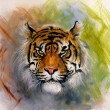 Beautiful airbrush painting of a mighty fierce tiger head on a soft toned abstract background — Stock Photo #68766045
