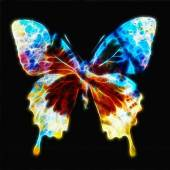Illustration of a butterfly, mixed medium, color background, fractal effect — Stock Photo