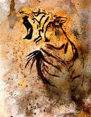 Tiger collage på färg abstrakt bakgrund, rost struktur, vilda djur — Stockfoto