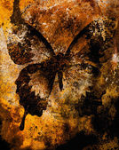 Color butterfly, illustration and mixed medium, abstract  background, vintage rust effect — Stock Photo