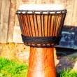Original african djembe drum with leather lamina, on green in sun light — Stock Photo #72037045