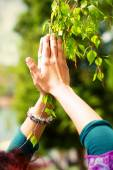 Spring prayer  adoring the healing powers of the spring, Tree — Stock Photo