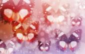 Collage illustration of a colorful butterfly and star a bokeh — Stock Photo