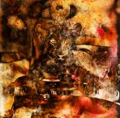 Lion cub photos and painting Abstract Collage. Eye contact — Stock Photo